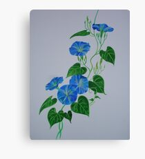 Blue Bindweed Canvas Print