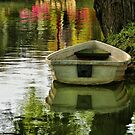 The Little Boat by Barbara  Brown
