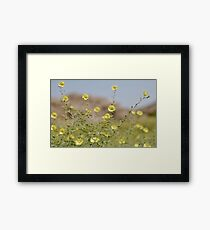 desert colours Framed Print