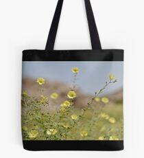 desert colours Tote Bag