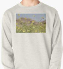 desert colours Pullover