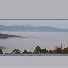 Hartz Peak from Lower Longley by Merrilyn Serong