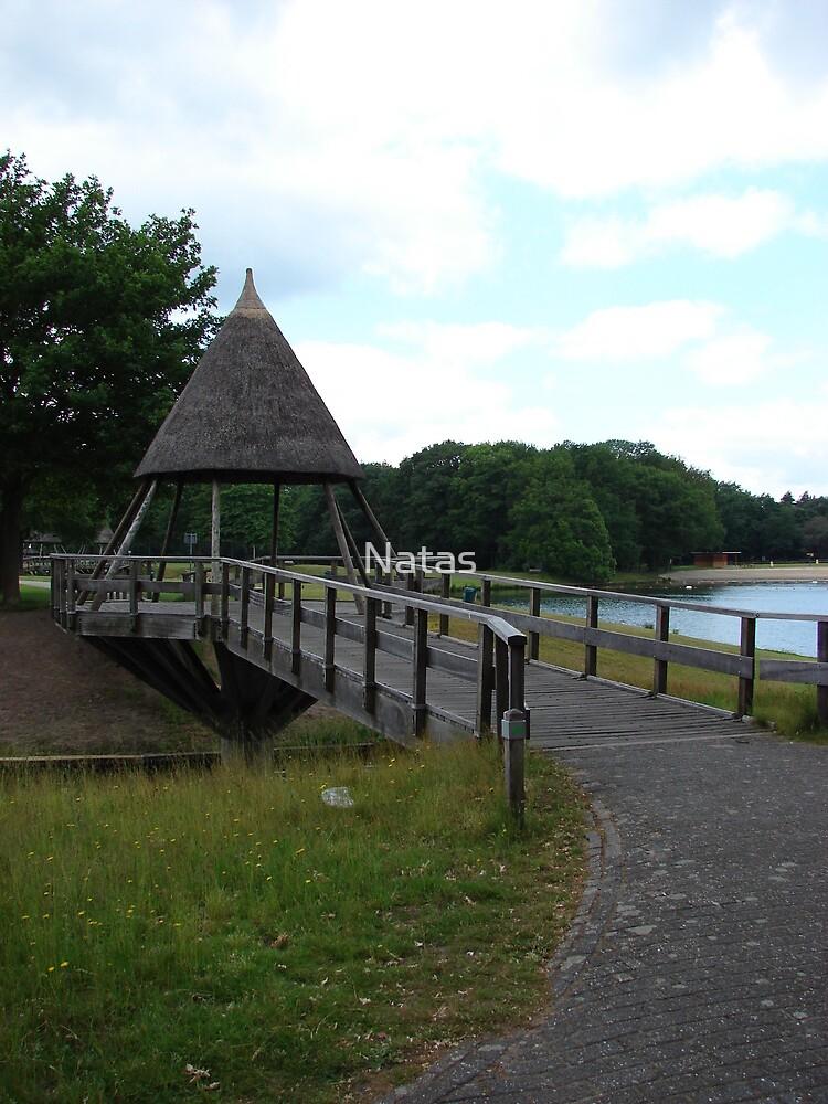 Bridges by Natas