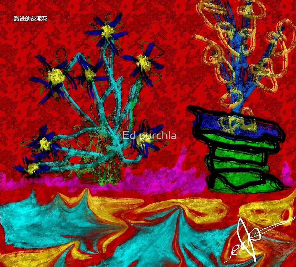 激进的灰泥花 by Ed purchla