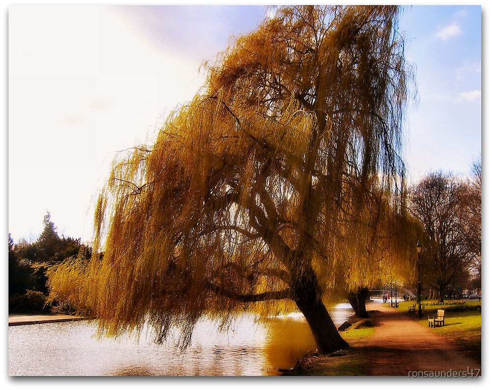 Bedford Town Riverbank. by ronsaunders47