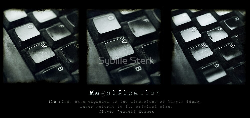 Magnification by Sybille Sterk