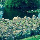 Pond Spring Sprite u by frnkmurray
