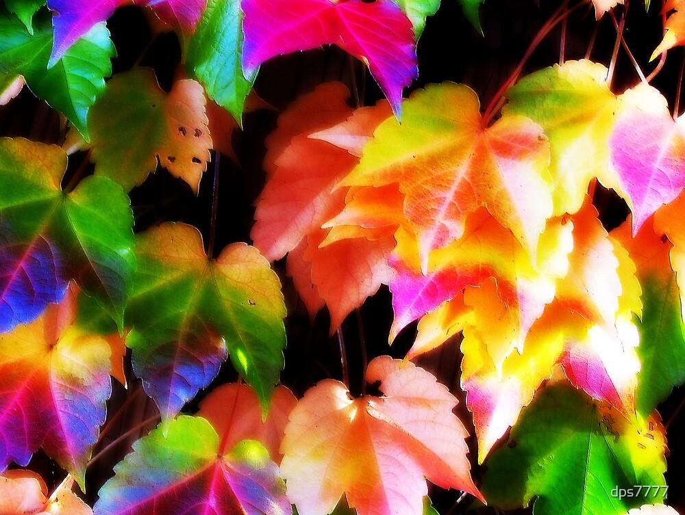 Orton Autumn by David Schroeder
