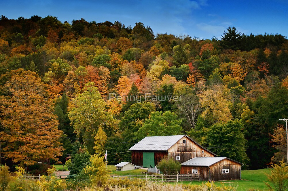 Fall scene at Lincoln Falls, PA by Penny Fawver