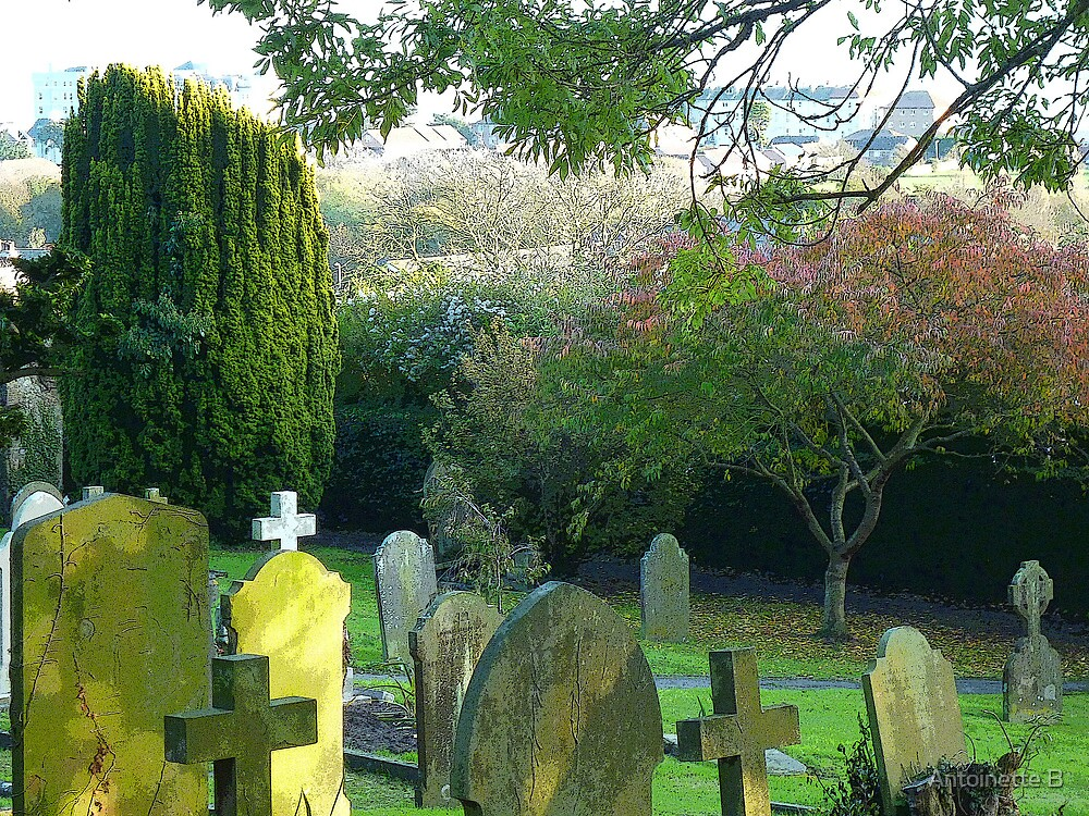 The Churchyard In Autumn  by Antoinette B
