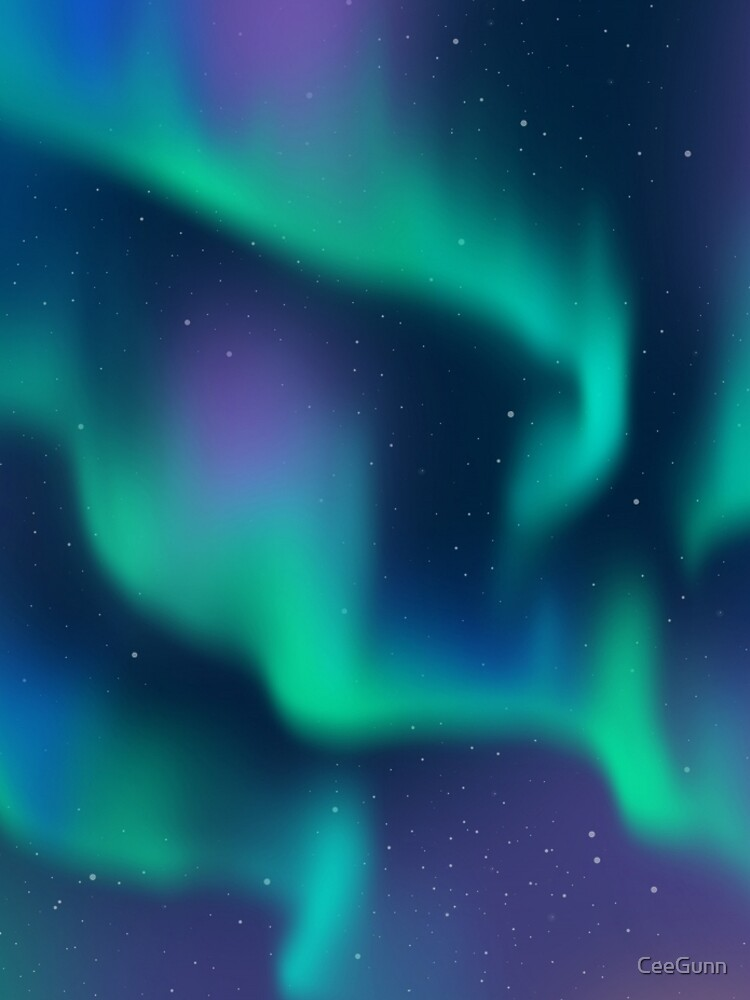 Aurora Borealis Northern Lights by CeeGunn