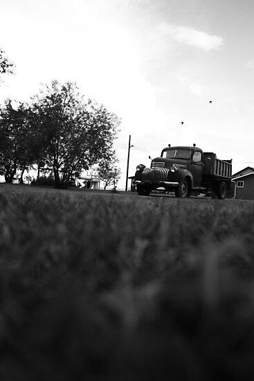 Old Truck by Tim Trott