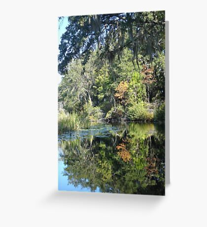 FIRST TOUCH  OF FALL Greeting Card