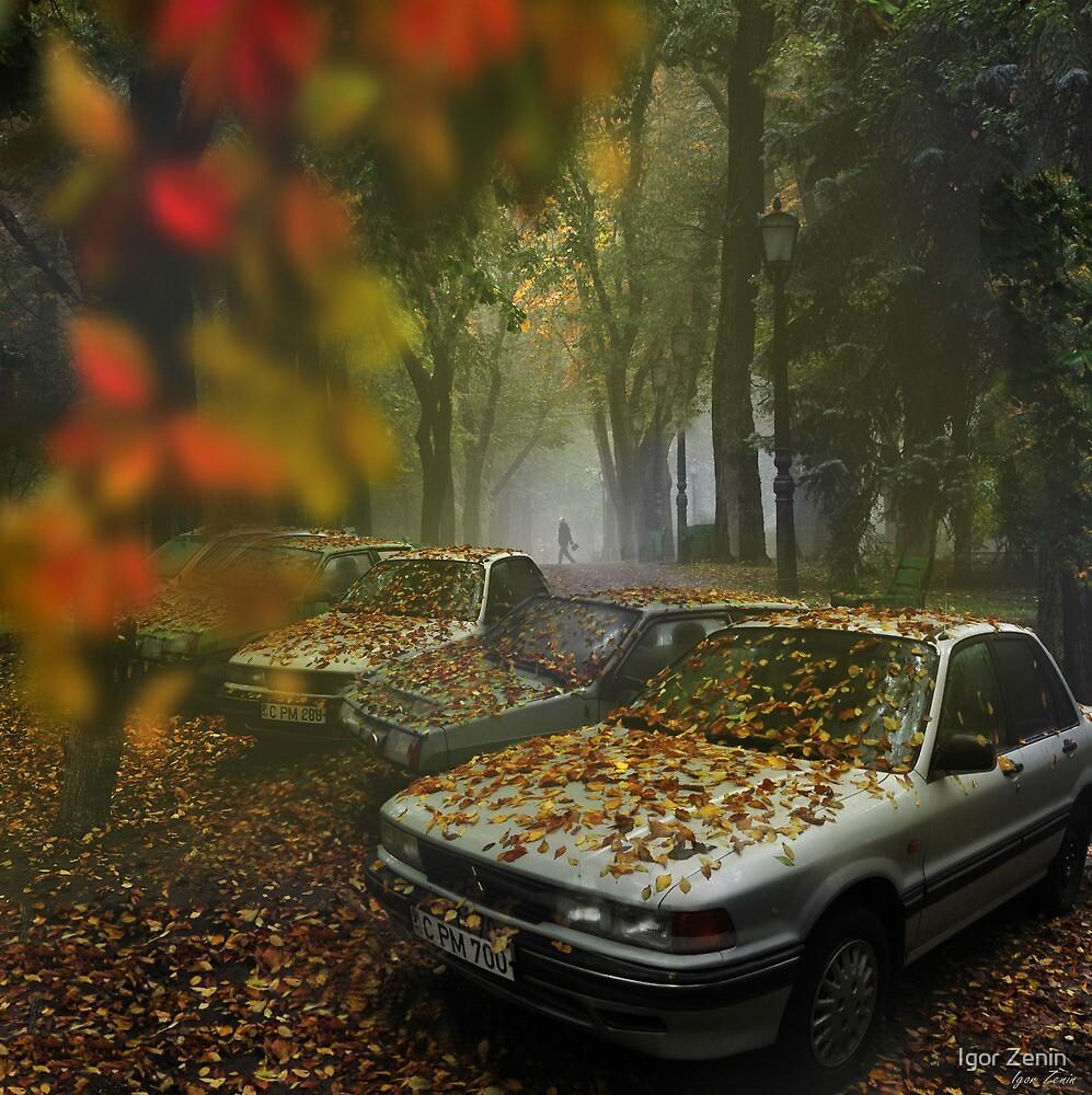 Falling Leaves by Igor Zenin
