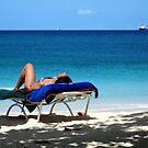 Life`s a Beach by John Dalkin