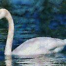 Swan by Joe Misrasi