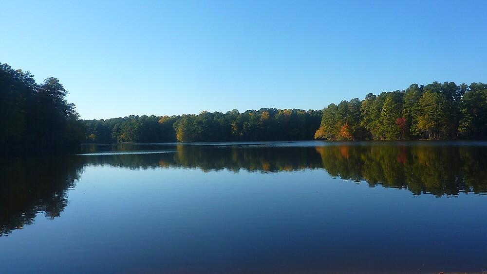 Lake Johnson by baddash3w