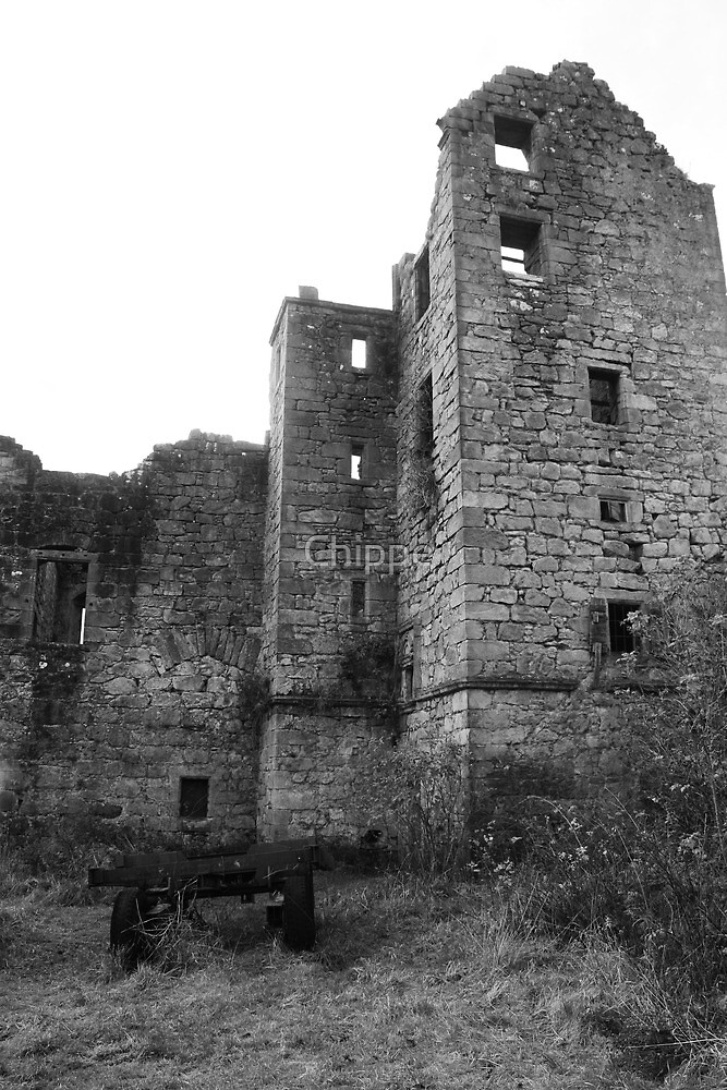 Torwood Castle by Chippe