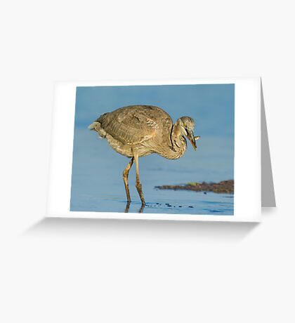 To swim another day! Greeting Card