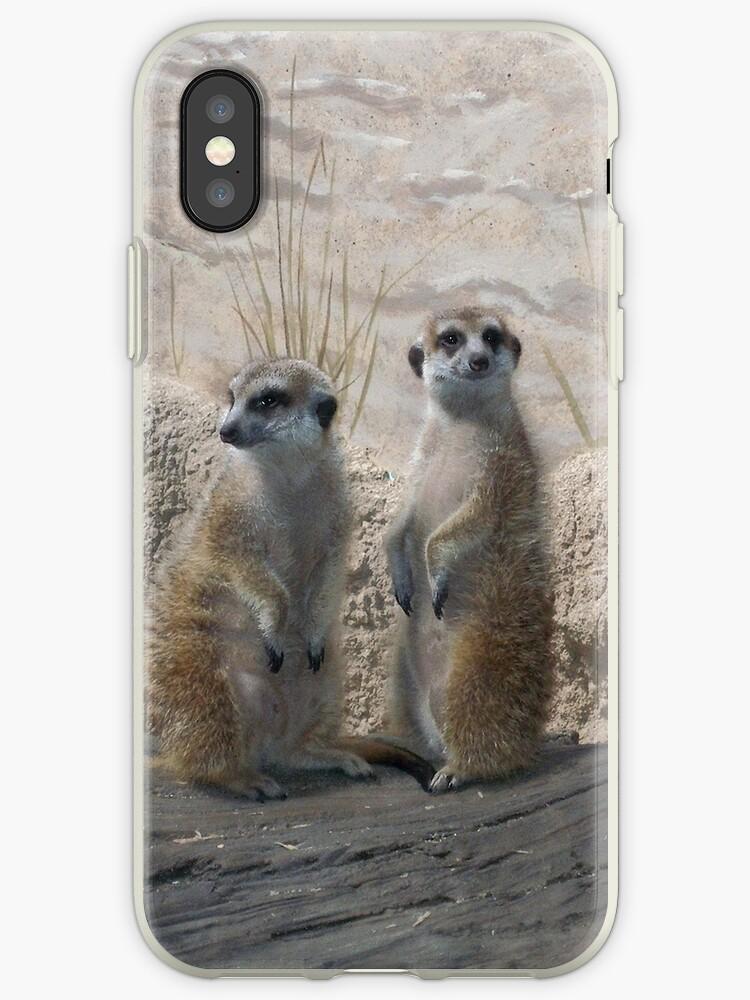 Meerkats by Ginger Denning