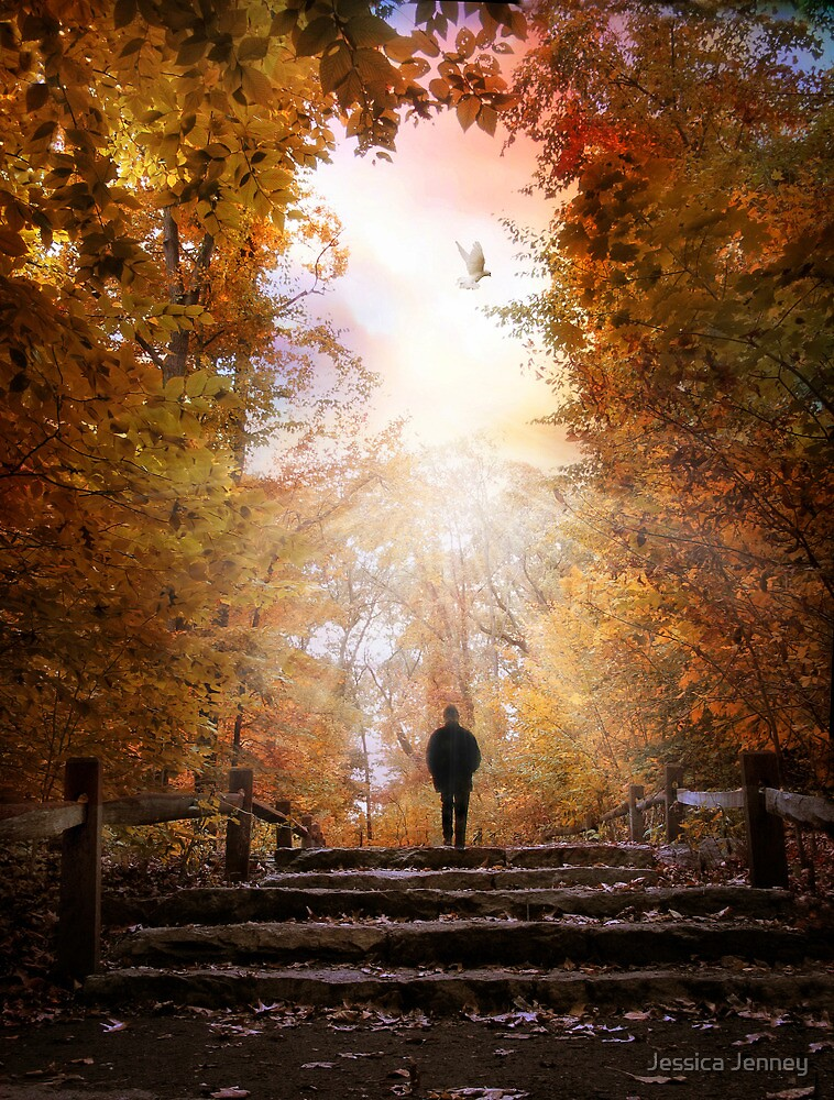 Autumn Ascension by Jessica Jenney