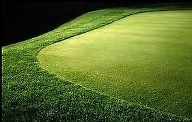 Buy Putting Turf by artificialgrass