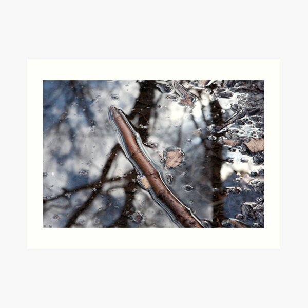 Puddle Twig Art Print