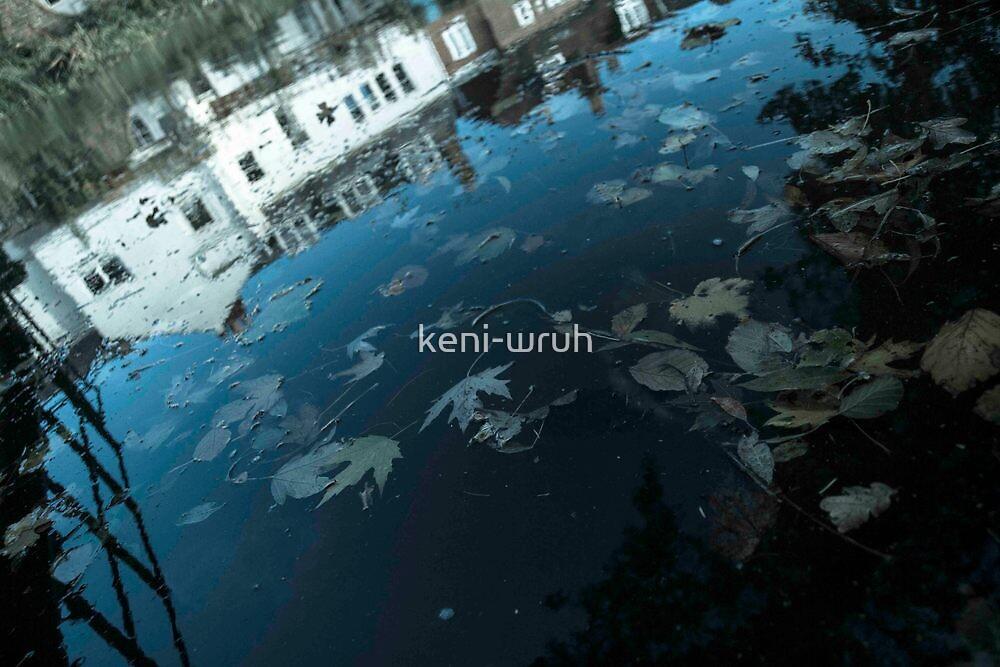 November Reflection by keni-wruh