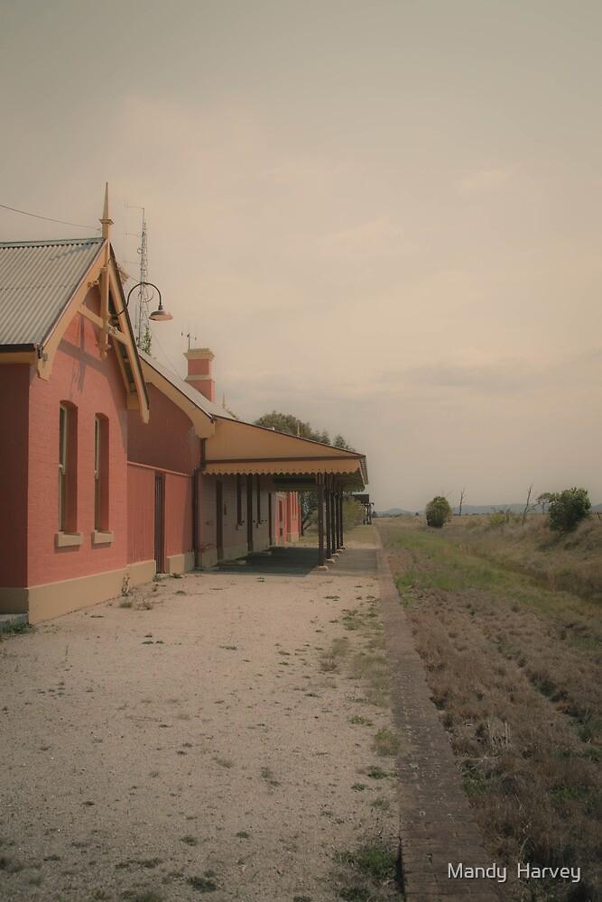 Deepwater Historical Train Station, Hazy Morning by Mandy  Harvey