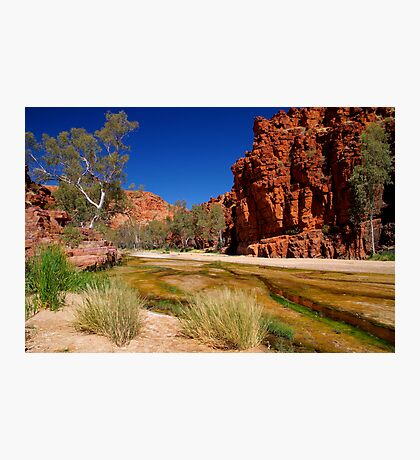 """Outback River"" Photographic Print"