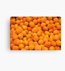 Fresh Organic Apricots  Canvas Print