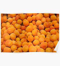 Fresh Organic Apricots  Poster