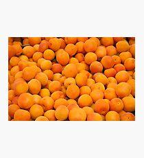 Fresh Organic Apricots  Photographic Print
