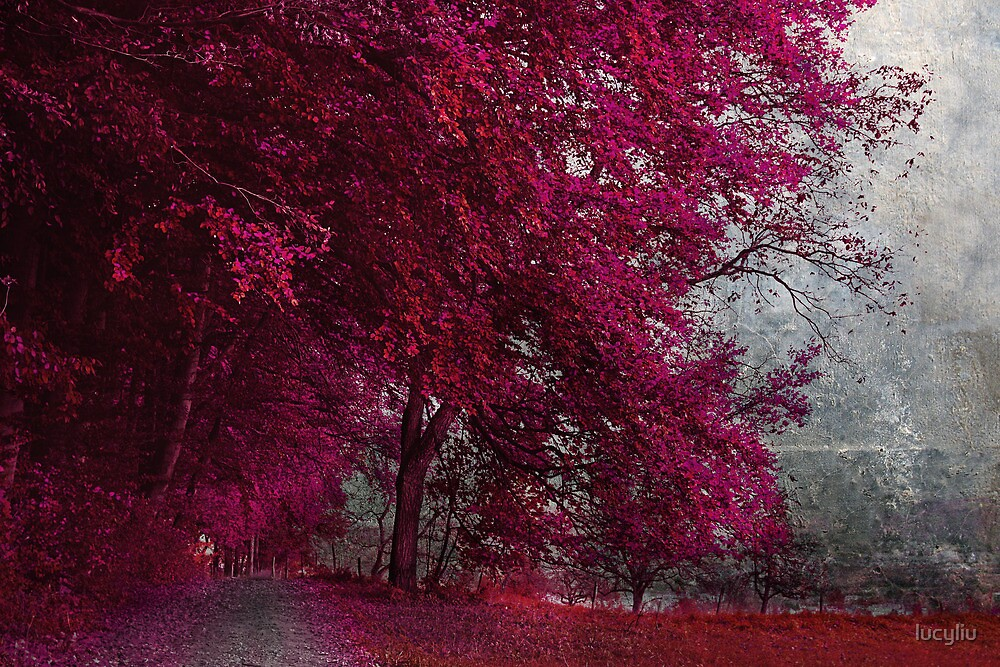 autumn by lucyliu