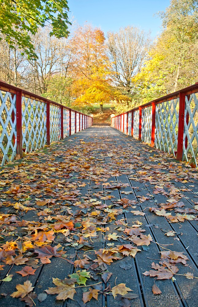 Autumn Walk in Queen's Park by Sue Knowles