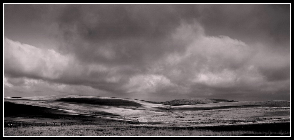 Bleak and beautiful by smurfington