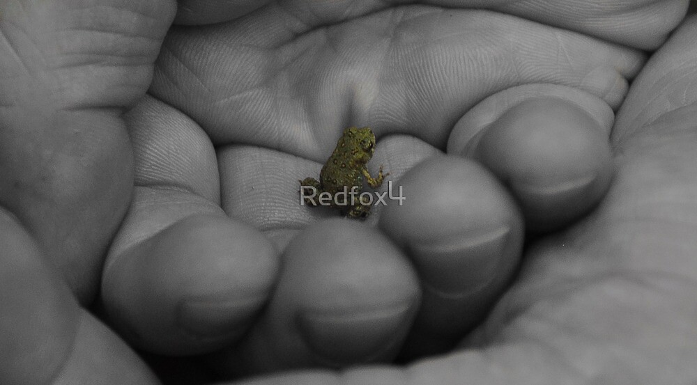 Life is in your hands by Redfox4