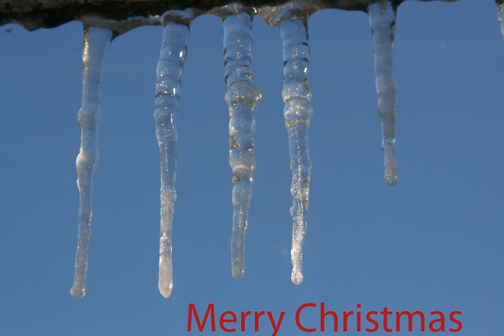 Icicle Christmas card by David Devine