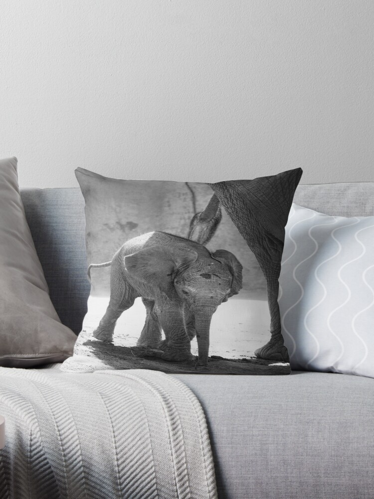 Baby Elephant, black and white by Jeannette Katzir
