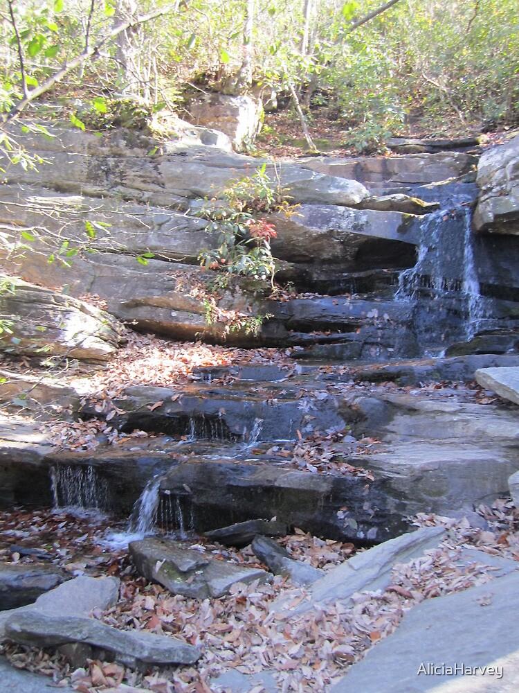 Hidden Falls  by AliciaHarvey