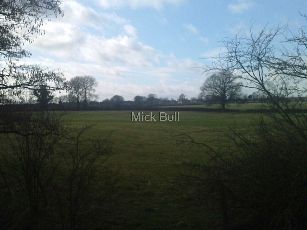 Field from afar by Mick Bull