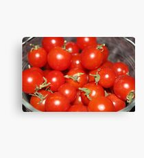 Summertime Tomatoes Canvas Print