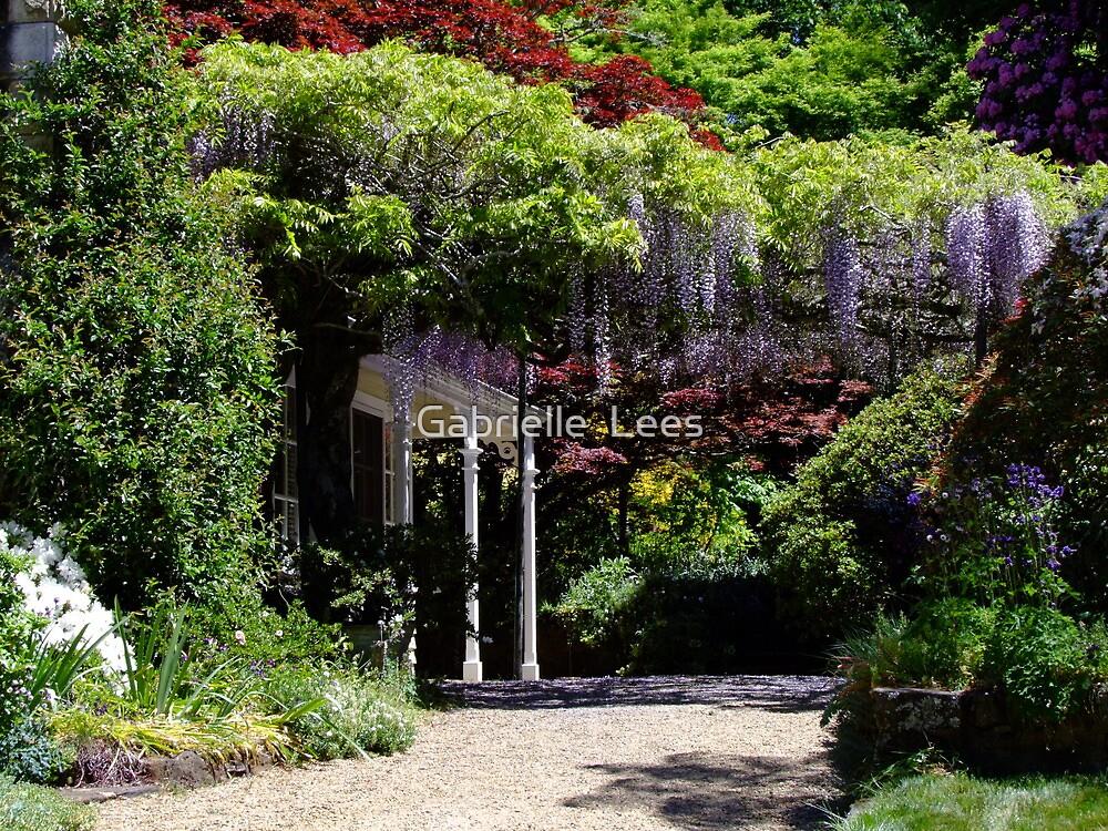 Nooroo Garden, Mt Wilson by Gabrielle  Lees