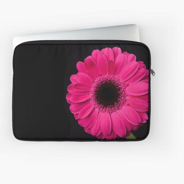 Pink Gerbera Laptop Sleeve