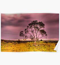 Spring Storm  Rural NSW Poster