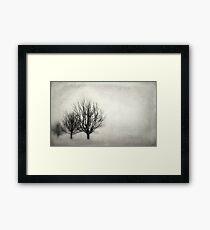 Winter in Matsqui Framed Print