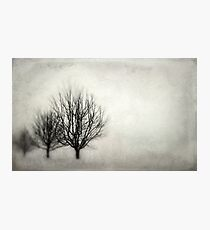 Winter in Matsqui Photographic Print