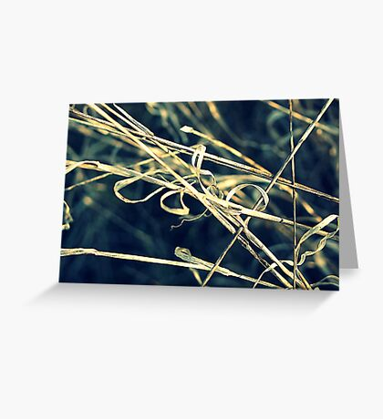 Reed Abstract Greeting Card