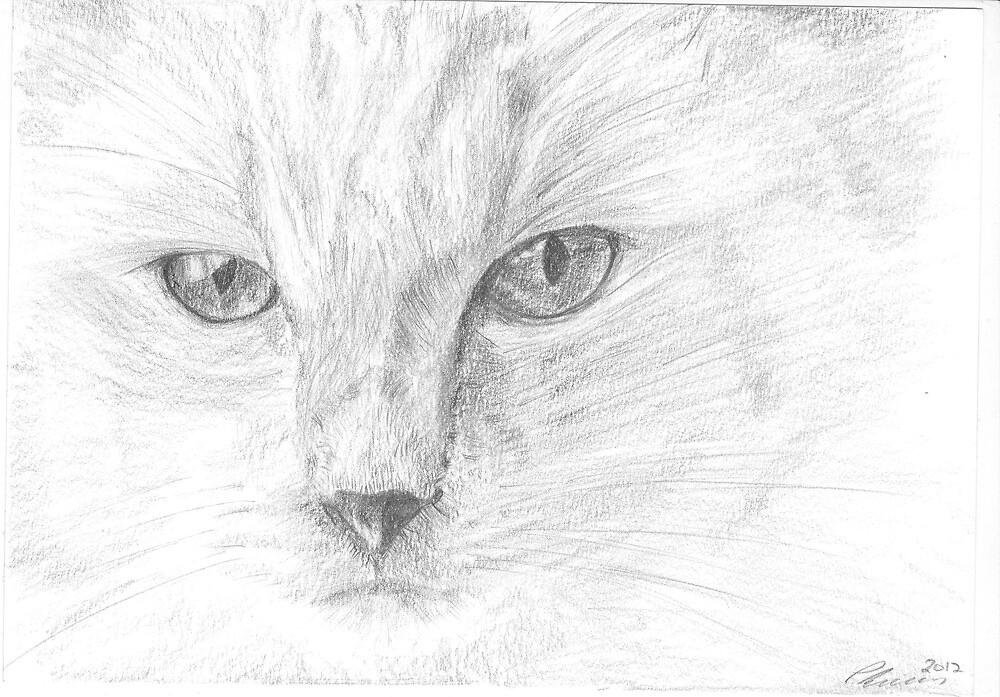 Fancy Cat by Pat Lucas