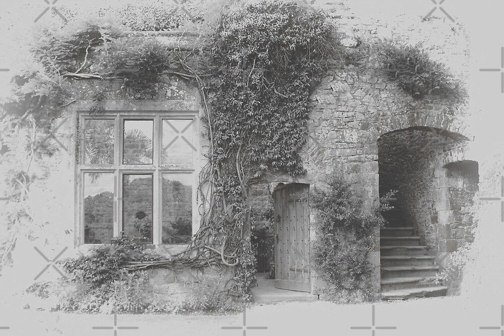 Ivy round the Window by Catherine Hamilton-Veal  ©